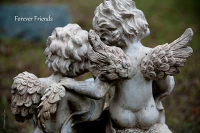 SOULMATESFOREVER FRIENDS_Fotor